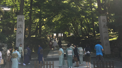 yoshi_002