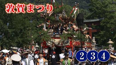 tsuruga_001